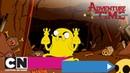 Время приключений | Конкурс красоты Моритури те салютамус (серия целиком) | Cartoon Network