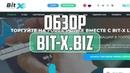 Обзор и отзывы о проекте Bit X Хайп Мониторинг инвестиционных проектов