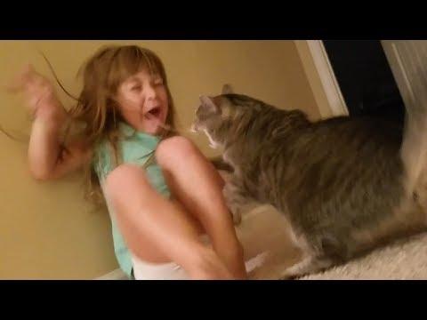 Niños y Mascotas 😆 SI TE RÍES PIERDES 😆 Nivel Dios   Abril 2018