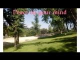 Peace on your Mind - Pleiadian Eyha