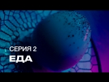 S7 Airlines | Инопланетное шоу «Посетите Землю». 2 Серия: Еда