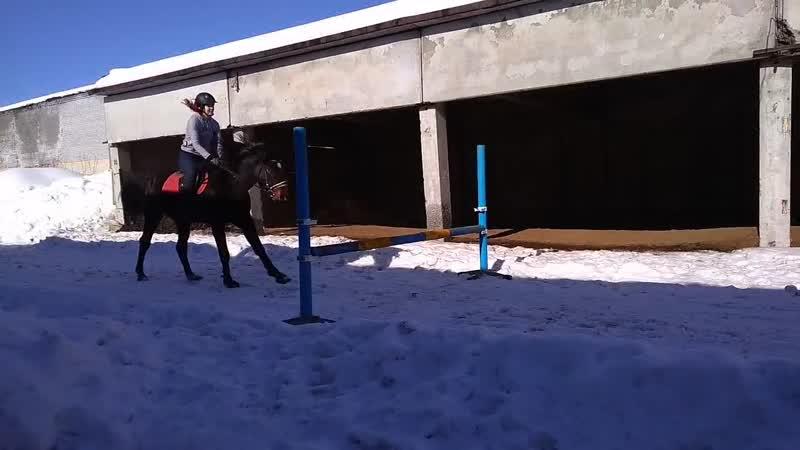 Прыжковая тренировка