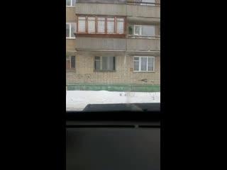 Алексей Пушкарёв - Live
