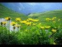 ЛИХТЕНШТЕЙН: Альпийская Панорамная тропа