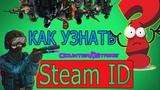 Как узнать свой Steam ID CS 1.6