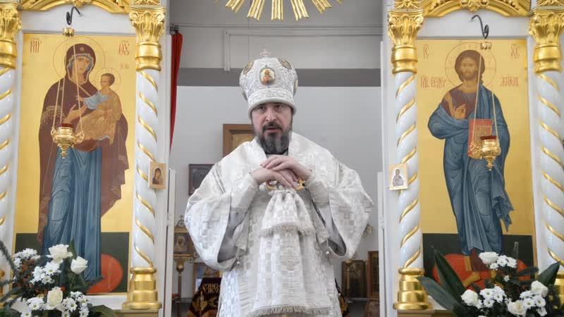 Проповедь митрополита Савватия в Навечерие Богоявления. Крещенский сочельник