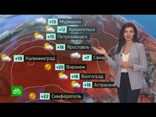 Утренний прогноз погоды на 15октября