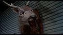 Зловещие Мертвецы 2 (Сцена смеха) \ Evil Dead 2 (Laughing scene)