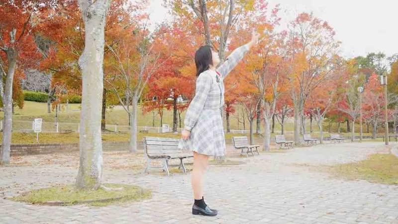 【Py.】 愛言葉Ⅲ 踊ってみた sm34134451