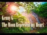 Kenny G - The Moon Represent My Heart