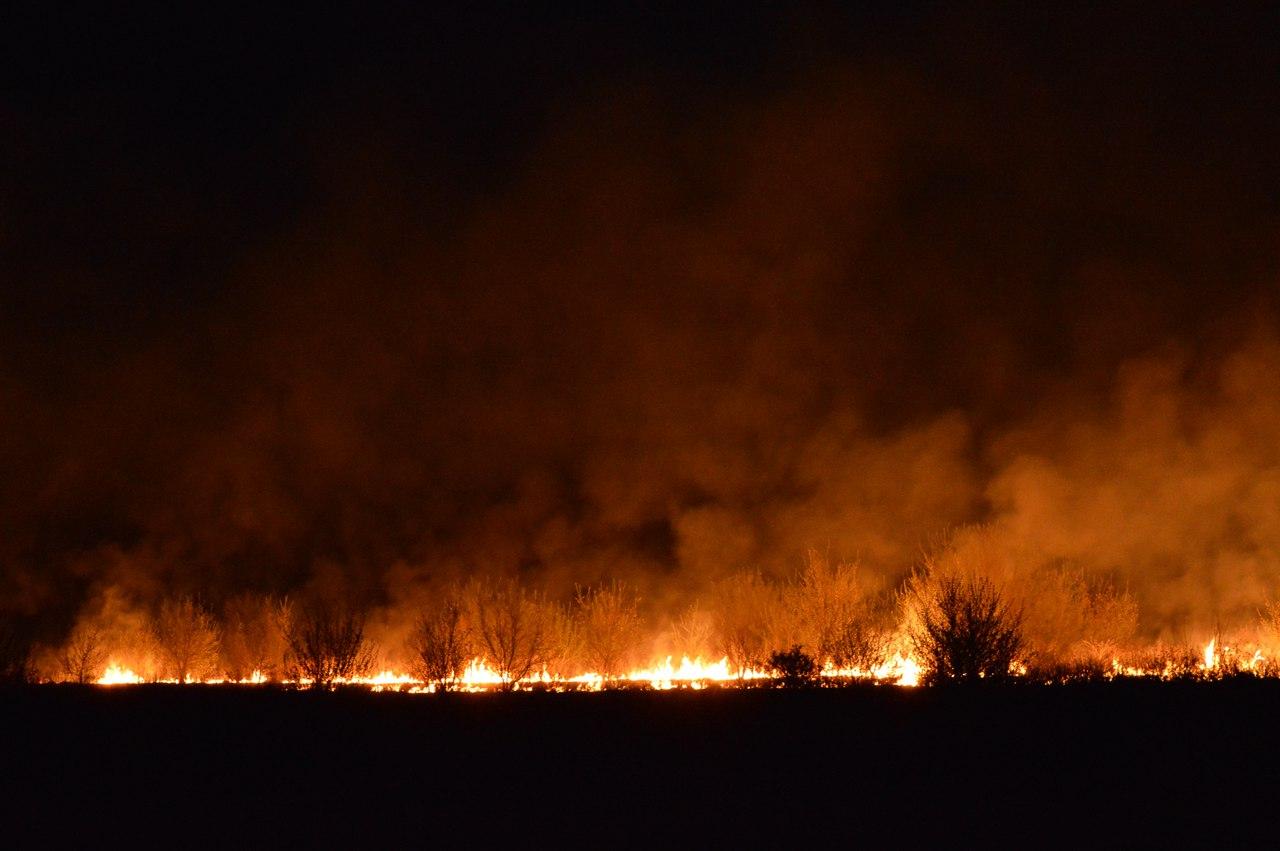 горящее поле фото только