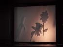 Теневой театр Волшебная кисточка китайская сказка