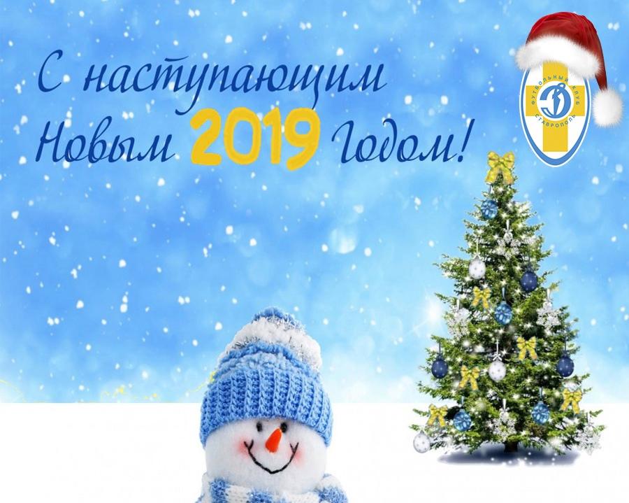 С наступающим Новым 2019 годом!