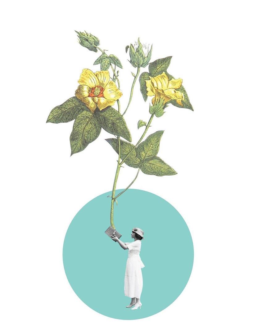 Афиша Самара 7.06. Ботанический сад