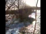 Небывалый разлив Цивиля вблизи деревни Ердово#чувашия #весна #таванен