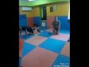 БК Оплот (тренировка по боевому самбо. Тренер: Юрий Рощин)