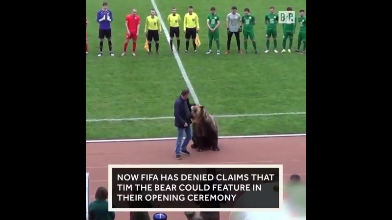 A Russian bear presented the referee with the ball before a matchnow its at the heart of a cruelty scandal.