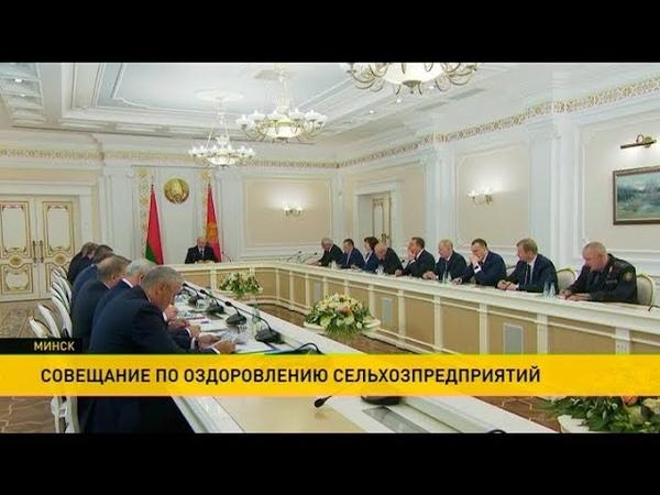 Меры по финансовому оздоровлению сельхозпредприятий обсуждают на совещании с участием Президента
