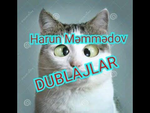 Harun Memmedov, bütün pişik dublajları.