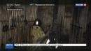 Новости на Россия 24 • Луганские шахтеры остались под землей после обстрела армией Украины