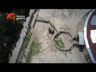 Вольер слонов в Ростовском зоопарке