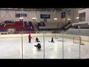 вратари хоккей