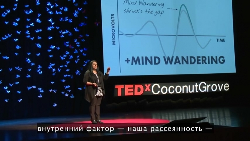 Амиши Джа   TEDxCoconutGrove Как приручить блуждающий ум