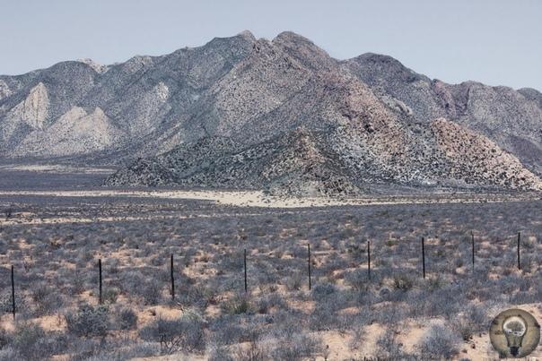 Место, где ничего нет: пустыня Намиб в фотографиях бельгийки Марушки Лавин
