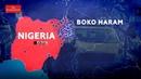 Расцвет терроризма в Африке – рост активности Боко Харам в странах Сахеля.
