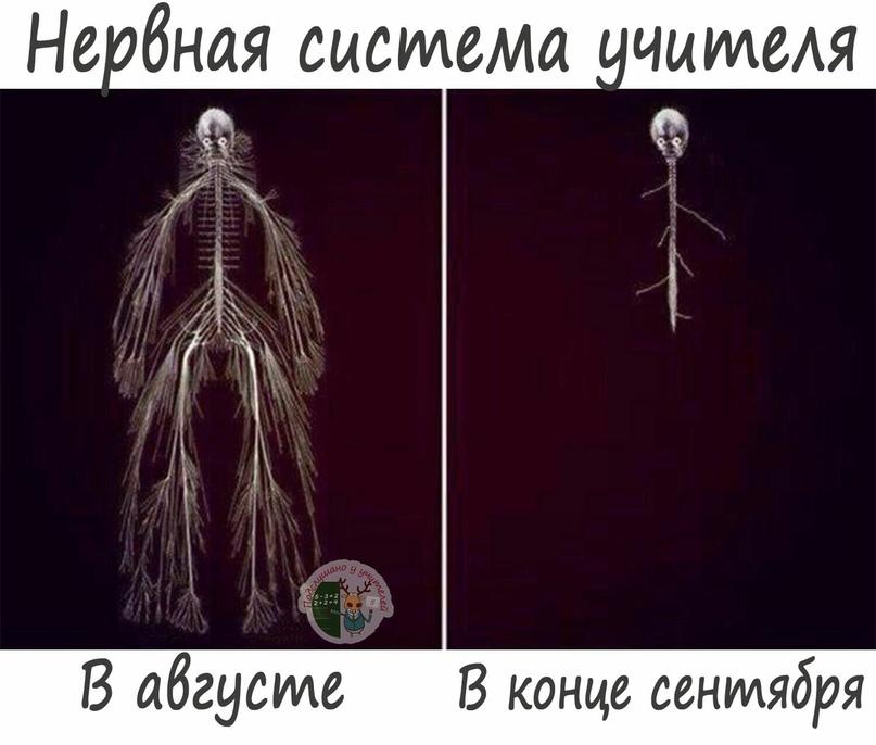 Екатерина Петрова | Березовка