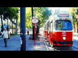 Vienna Downtown City Center Zentrum Wien Innere Stadt Vienna &amp Transportation Trams Buses by The Tou