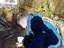 водопад Горный Алтай Царская охота