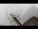 Рисуем череп пошагово, видеотуториал