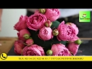 Цветочная композиция на свободную тему от голландского мастера флористики
