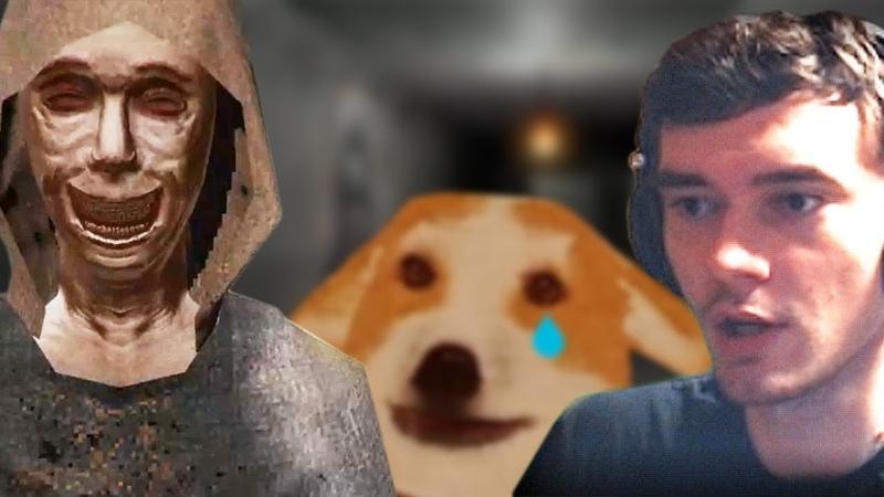 Спасти собачку из кошмара