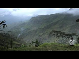 СОЛЬ ЗЕМЛИ The.Salt.of.the.Earth (2014) - документальный, биография, история. Джулиано Рибейру Сальгаду, Вим Вендерс