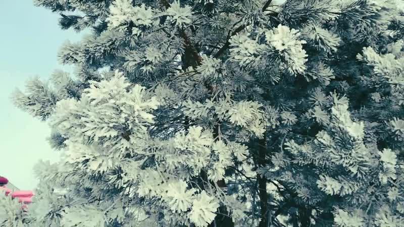 ИрэнаВарсоба Зимняя прогулка