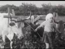 El campo para el hombre Helena Lumbreras y Mariano Lisa 1973