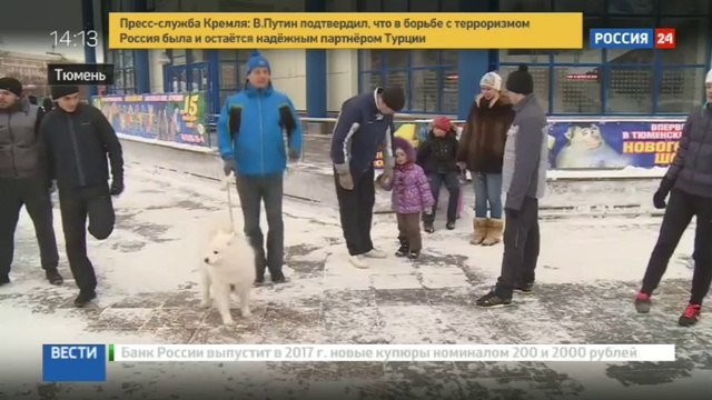 Новости на «Россия 24» • Жители Тюмени начали новый год с забега трезвости