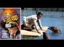 День дельфина 1973 США драма фантастика