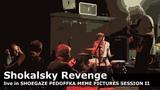 Shokalsky Revenge live in SHOEGAZE