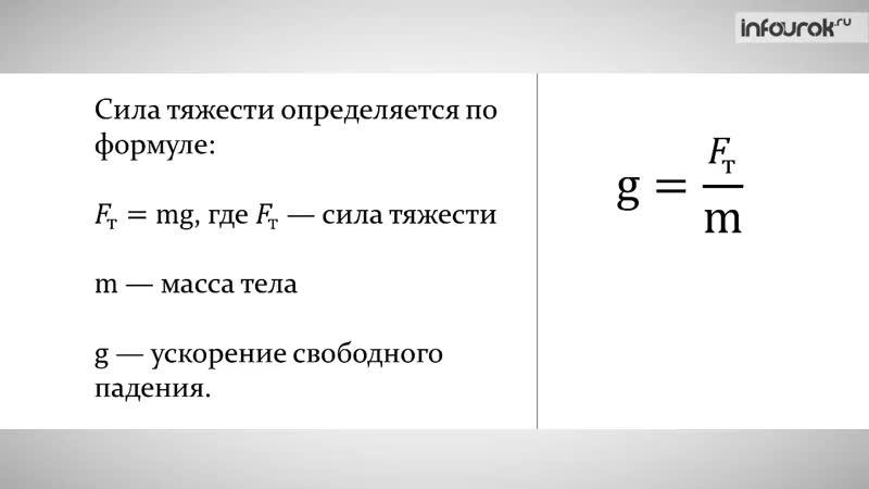 Единицы силы. Связь между силой тяжести и массой тела _ Физика 7 класс 21 _ Инф
