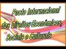 Pacto Internacional dos Direitos Econômicos, Sociais e Culturais