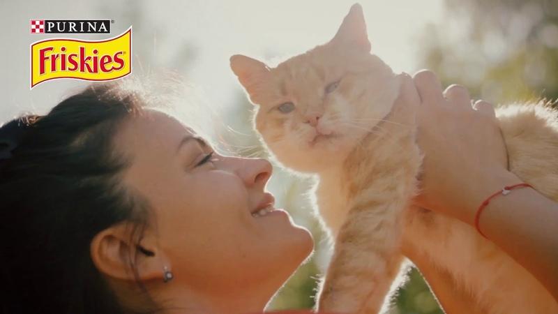 История Наташи и кота Рыжика фрискисместоподсолнцем PURINA FRISKIES®