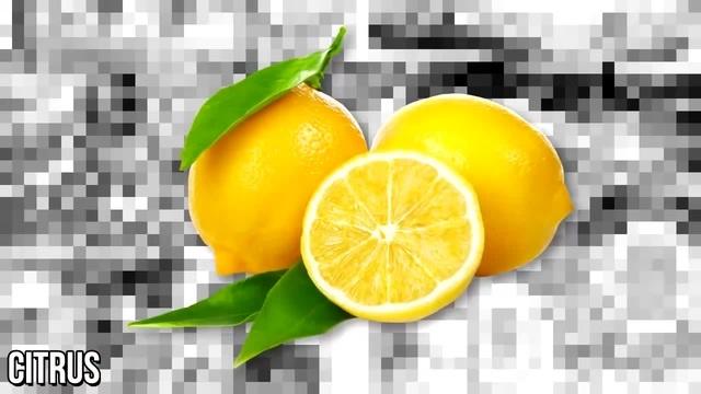 Citrus Classification