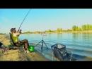 Фидер рыбалка нового поколения Советы любителям Фидера