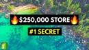 REVEALING😱 THE 1 SECRET OF SUCCESSFUL 6-Figure Stores (Unbelievable)
