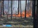 В Ярославской области прогнозируют самый высокий класс пожарной опасности