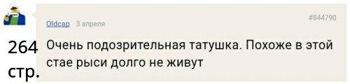 yQcUbIuDuiQ.jpg