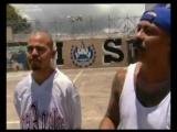 MS-13 самая жестокая банда в США